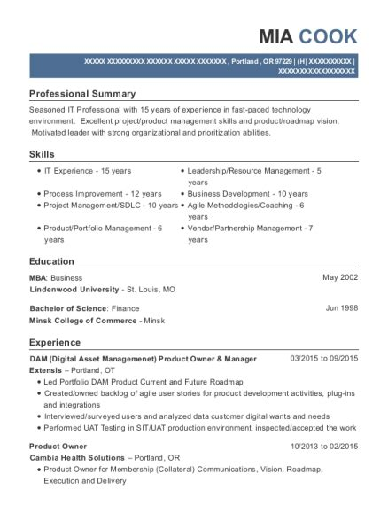 lify product owner resume sle new york new york