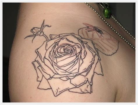 rose tattoo outline tattoo collections
