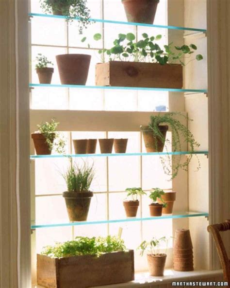 Window Sill Greenhouse Inspiration 1000 Ideas About Mini Greenhouse On Pinterest Small Greenhouse Small Plastic Greenhouse And