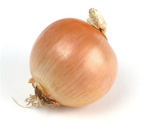 onion to pt everyday food critic