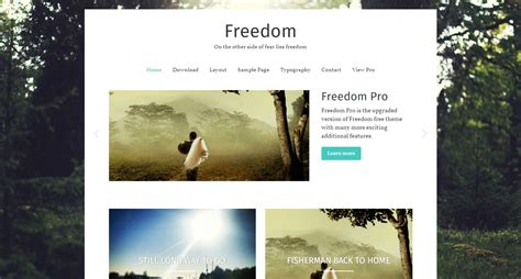 adsense vs freedom freedom wordpress theme download review 2018