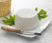 cottage cheese to lose weight