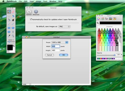 paint for mac want microsoft paint for mac os x paintbrush is equivalent