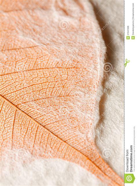 Handmade Leaf Paper - leaf embedded in handmade paper royalty free stock image
