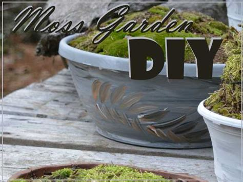 moss garden diy make your own gorgeous moss centerpiece
