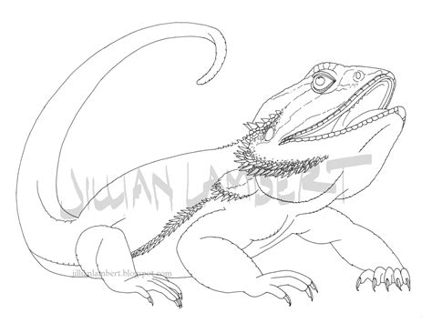 free bearded dragons coloring pages