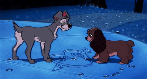 film disney vire the lady and the tr gif tumblr