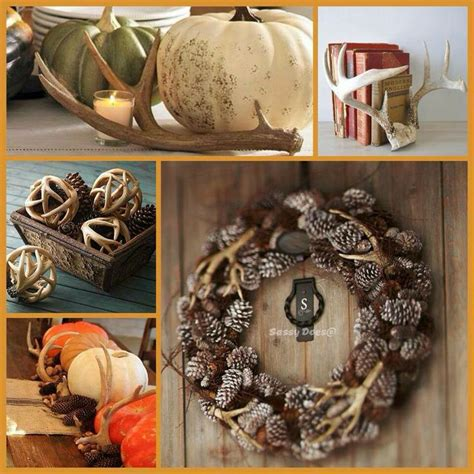 Deer Antler Decorating Ideas by Deer Antler Decorating Tips