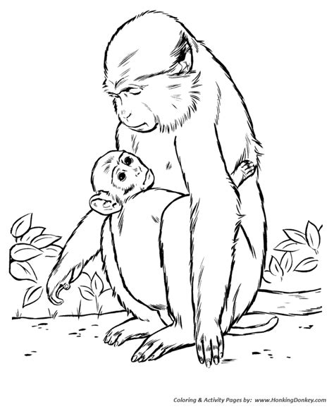 baby wild animals coloring pages wild animal coloring pages mother and baby monkey