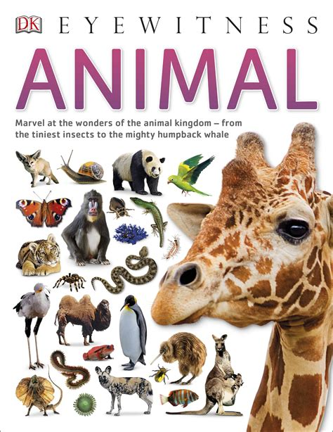 animal books dk eyewitness animal by dk penguin books australia