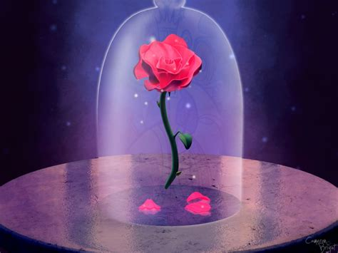 enchanted roses enchanted rose by camtoonist on deviantart