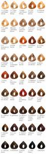 l oreal preference color chart loreal superior preference how to choose brown hairs