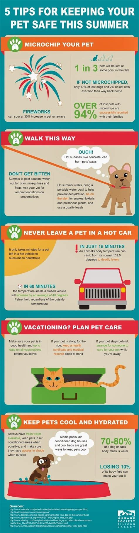 9 Tips On Keeping Your Outside Pet Safe From The Cold by 217 Best Beat The Heat With Your Pets Images On
