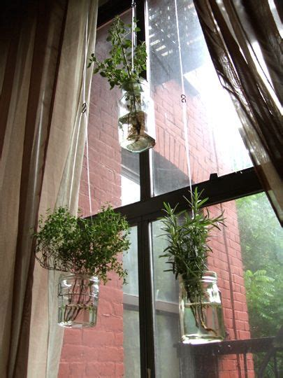 Hanging Window Herb Garden by 25 Best Ideas About Indoor Window Garden On Pinterest
