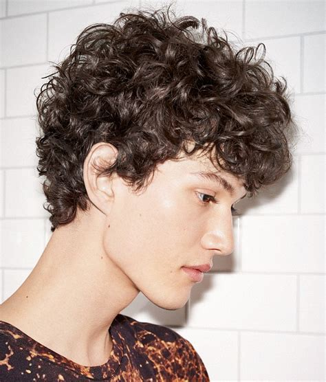 look at chriiy lkin shor curly hairstyles a medium black hairstyle from the night fever collection