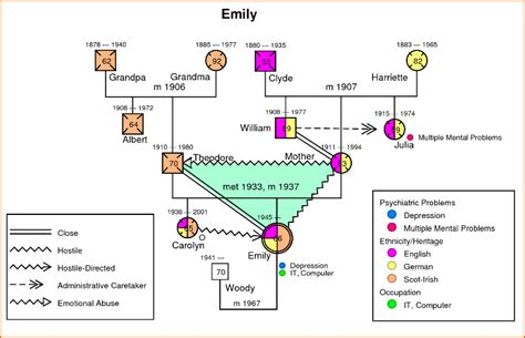 community genogram template 5 genogram sle teknoswitch