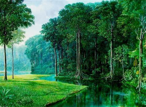 la selva tropical image gallery selvas tropicales