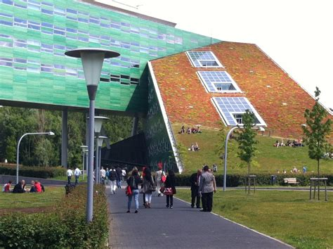 Amsterdam Business School Mba Requirements by Of Groningen
