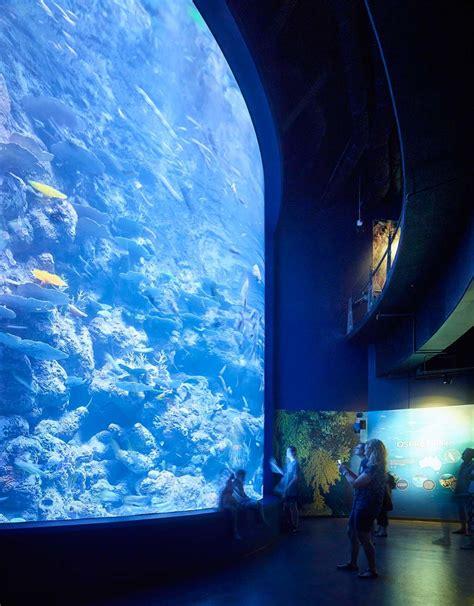 20 watt aquarium light amazonas 500 watt led lighting orphek aquarium led lighting
