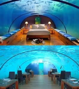 Octopus Rug Wallpapers Galleries 10 Coolest Underwater Places