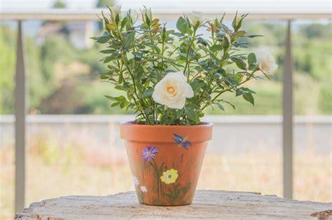 Blumentopf Bemalen