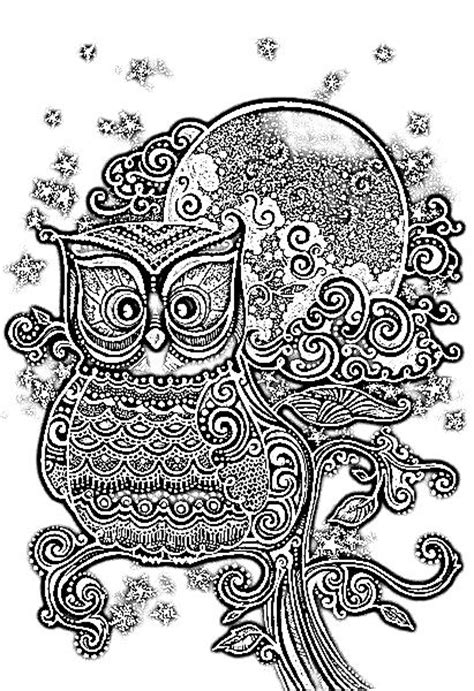coloring pages for adults owl owl coloring page coloring design pages pinterest