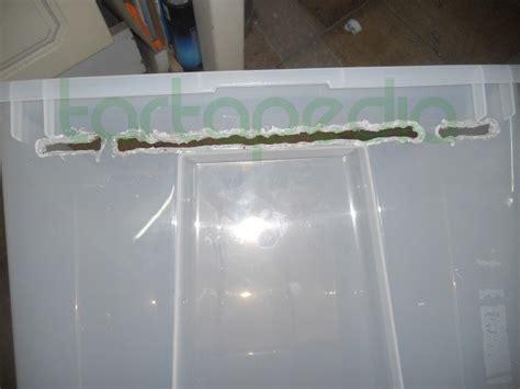 vasche in plexiglass costruire la zona emersa utilizzando vasca ikea e