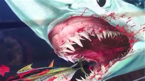 sailfish boat wraps boat wrap of sailfish and mako shark youtube