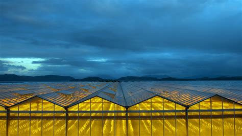 wallpaper of green house nature landscape hill clouds greenhouse yellow blue
