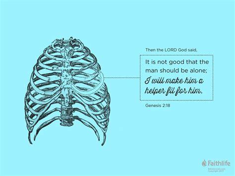 book of genesis 2 18 24 image gallery scripture genesis 2 2
