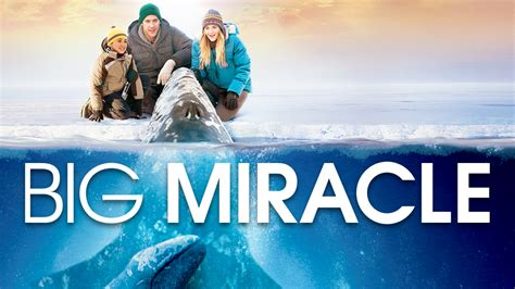 The Big Miracle Free Big Miracle Www Imgkid The Image Kid Has It