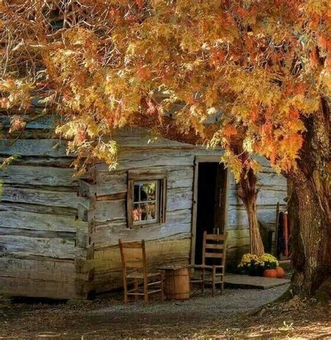 Who Survives In Cabin In The Woods by Cabin In The Woods Beautiful Homes Across The World