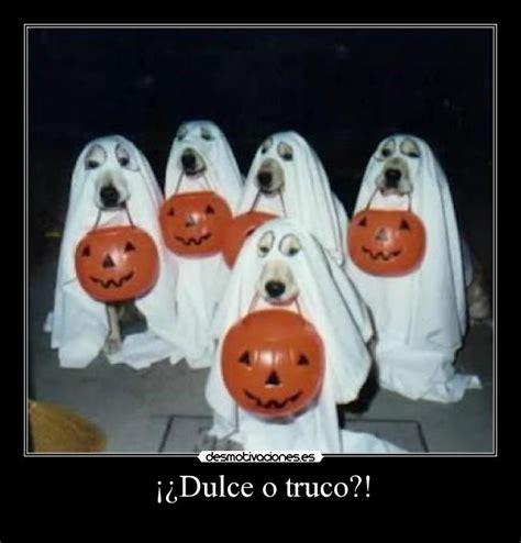 imagenes de halloween dulce o truco dulce o truco desmotivaciones