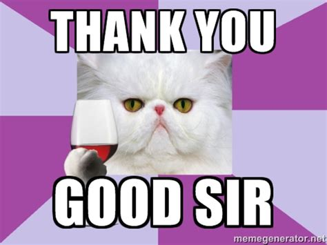 Thank You Cat Meme - top superhero thank you meme wallpapers