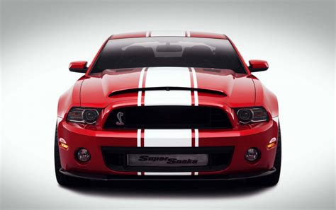 2013 ford mustang gt500 snake 2013 ford mustang shelby gt500 snake by galpin auto