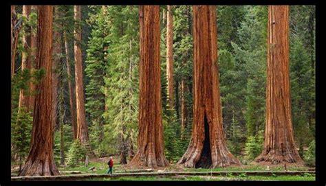 imagenes bellas e impresionantes hermosos paisajes naturales que rompen todos los r 233 cords