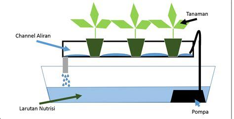 menanam hidroponik sistem nft merancang sistem hidroponik nft petani agro patas