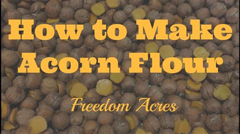 How To Make Acorn Flour