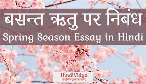 Who Are The Favorites This Season For Mba Mvp by Essay On Season Season Essay For