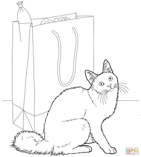 ragdoll cat coloring page angora cat coloring page free printable coloring pages