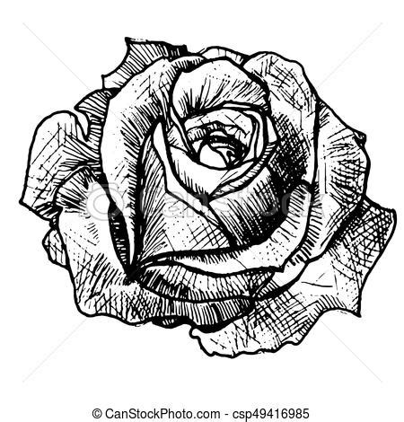 realistic rose tattoo art sketch rose stylish idea of a