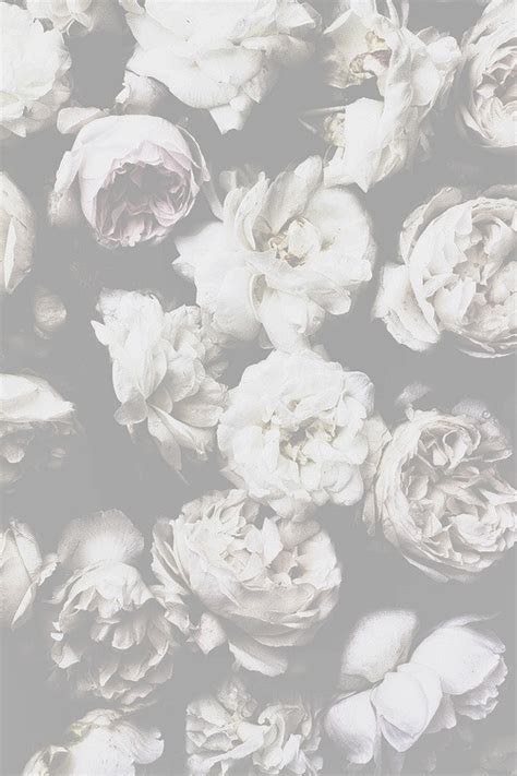 girly wallpaper tumblr black and white faded background tumblr