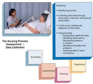 nursing assessment the nursing process part 1