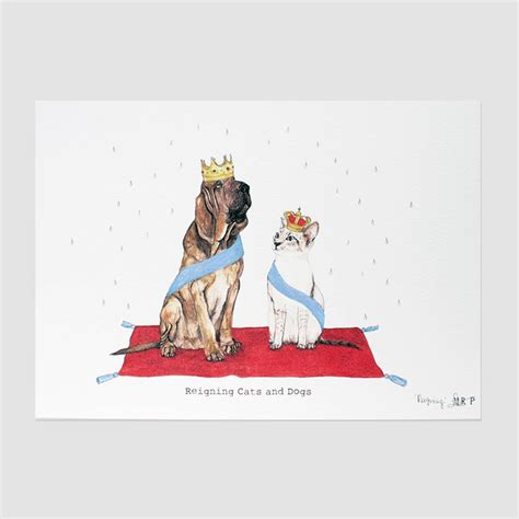 reigning cats and dogs reigning cats and dogs print by mister peebles notonthehighstreet