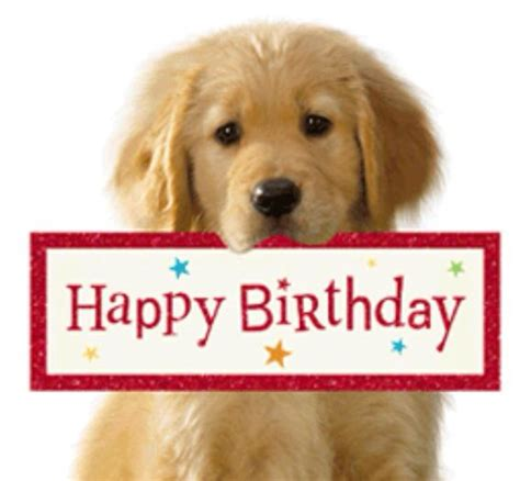 Happy Birthday Clip With Dogs Free by 434 Best Images About Happy Birthday On