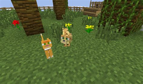 minecraft how to a how to a ocelot cat minecraft