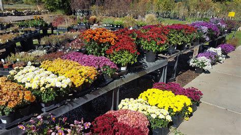 All Season Flower Garden All Season Flower Garden All Season Flower Gardens Designing Year Gardens Flower Garden And
