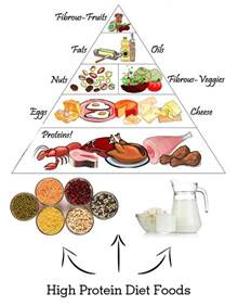 high protein diet choosing a diet that s right for your weight loss