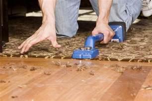 carpet vs hardwood flooring the great showdown