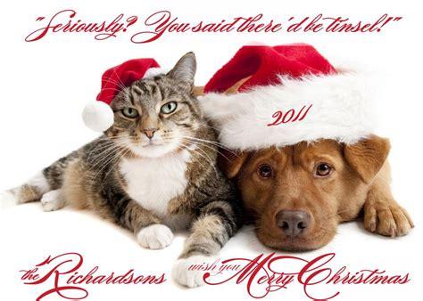 photo christmas card pets dog cat pet photo card     luulla